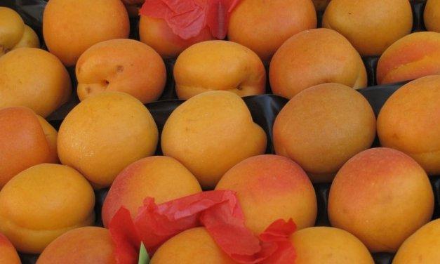 Confiture d'abricots.