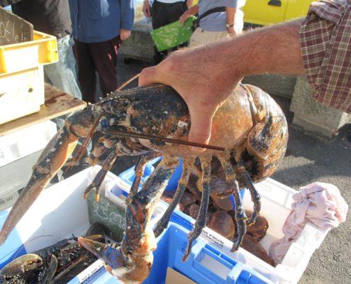 recette de homard
