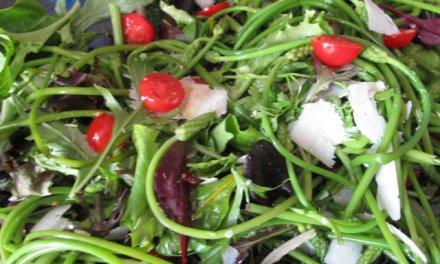 Salade d'asperges sauvages des bois.