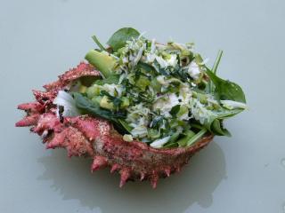 Chair d'araignée de mer en salade