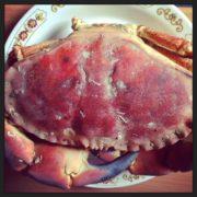 cuisson des crabes , tourteau et dormeur
