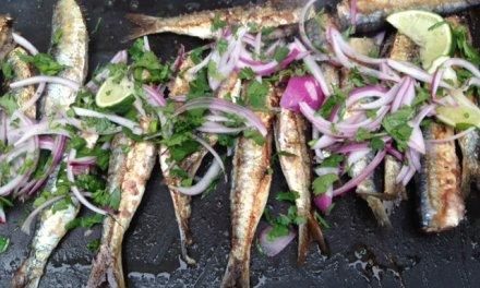 Sardines cuites à la plancha Une idée pour les Papas.