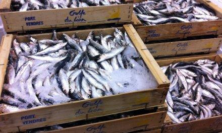 Filets de poisson panés aux agrumes