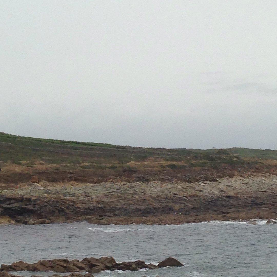 Virée à l'île aux vaches