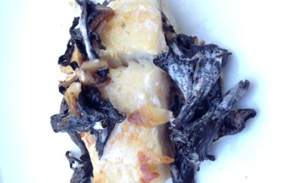 Filet de lieu jaune aux champignons