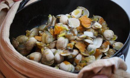 Coques / légumes de saison / cocotte