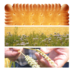 Salon de l 39 agriculture 2 invitations vous offrir - Salon de l agriculture invitation gratuite ...