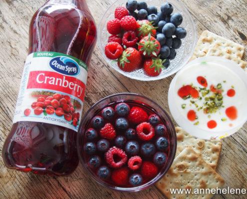 ocean Spray jus de cranberry