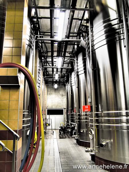 Visite des cuves Champagne Le Brun de Neuville