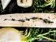 Recette de légumes cuits au four