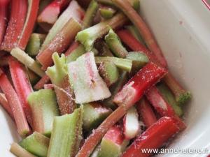 Rhubarbe en tronçon